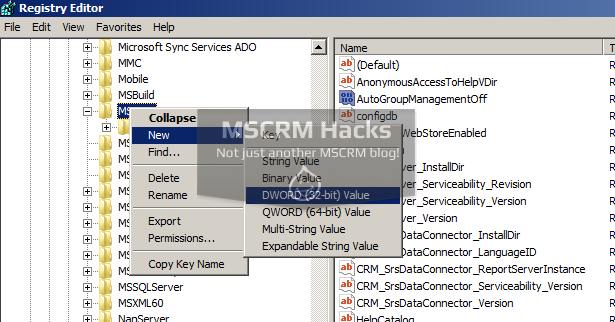 Disable Navigation Tour Video in CRM 2013 - Image 02